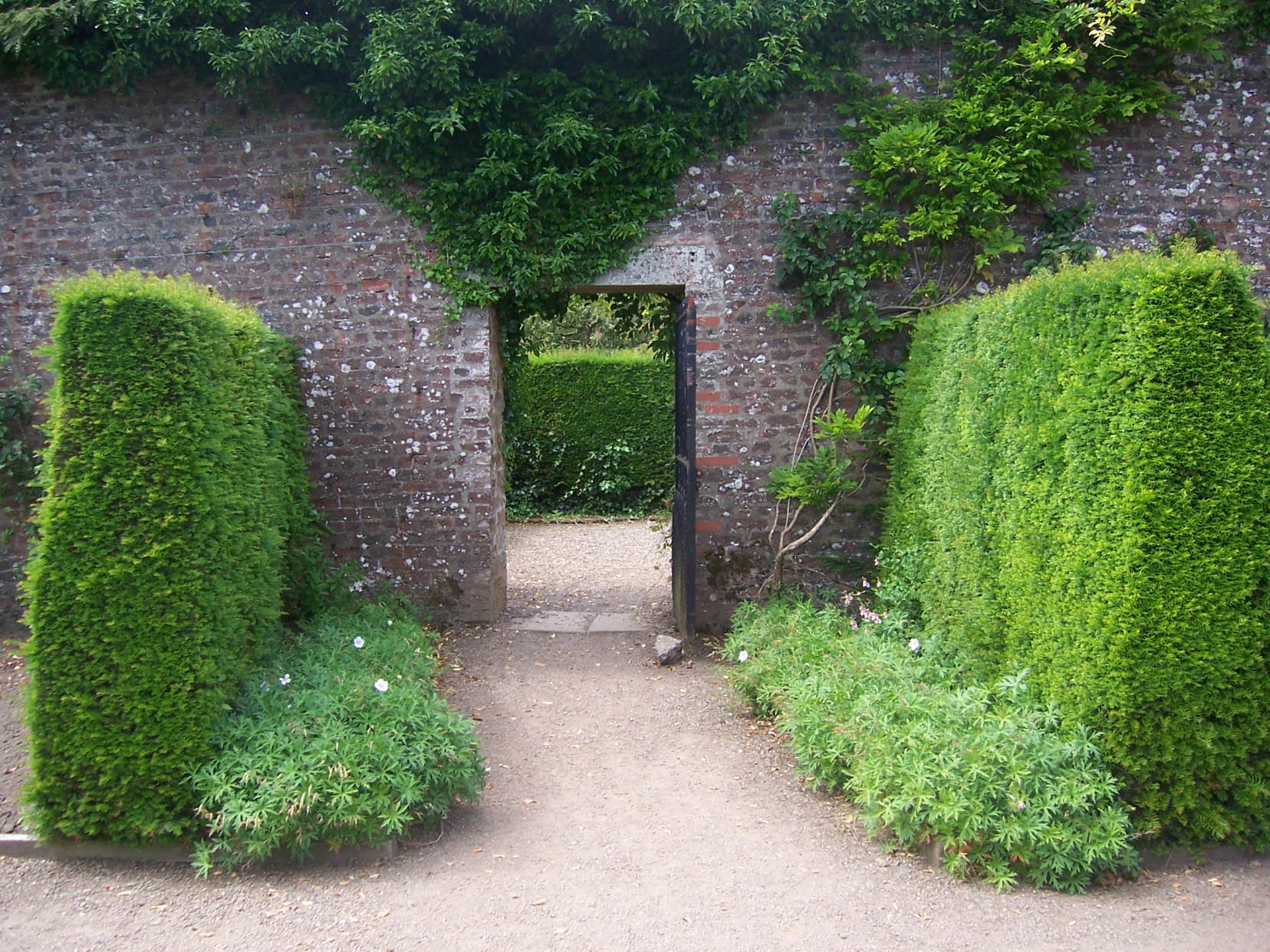 Walled gardens for Garden pictures