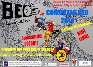 Comórtas-BEO-2014-website-300x214